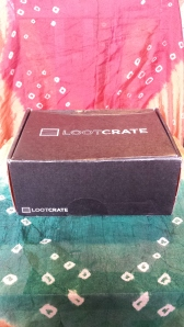 GGC Legos Suvival Loot Crate 077